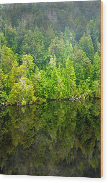 Franklin Gordon Rivers Reflections II Wood Print