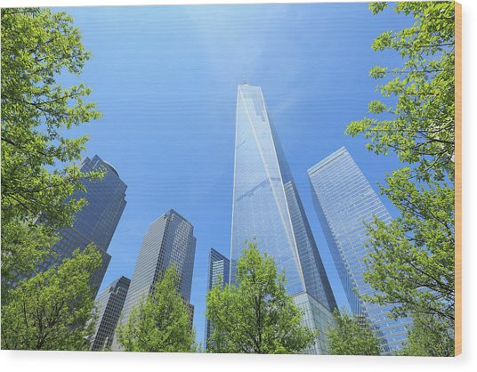 Freedom Tower Which Is Surrounded  By Wood Print by Toshi Sasaki