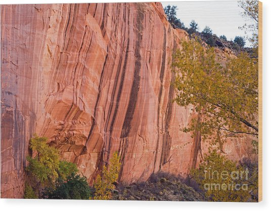 Fremont River Cliffs Capitol Reef National Park Wood Print