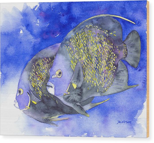 French Angelfish Wood Print