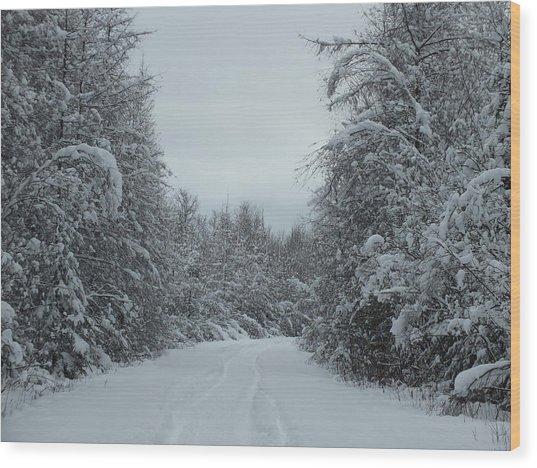 Fresh Trail Wood Print by Gene Cyr
