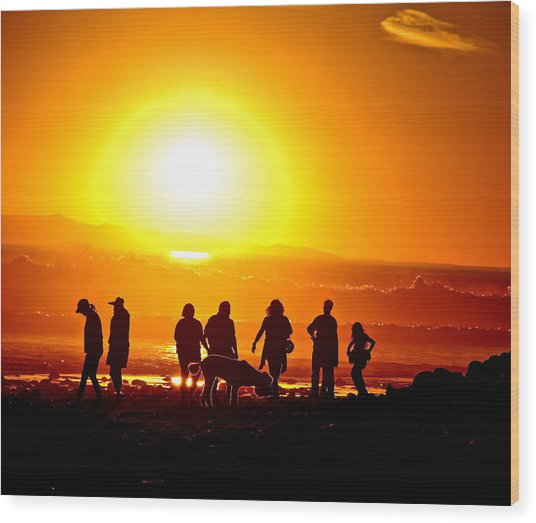 Friends At Sunset Wood Print by Liz Vernand