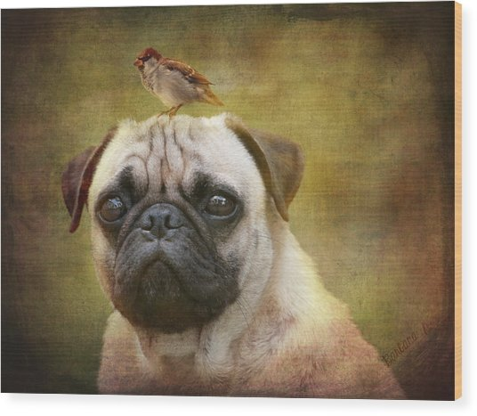 Friends Like Pug And Bird Wood Print