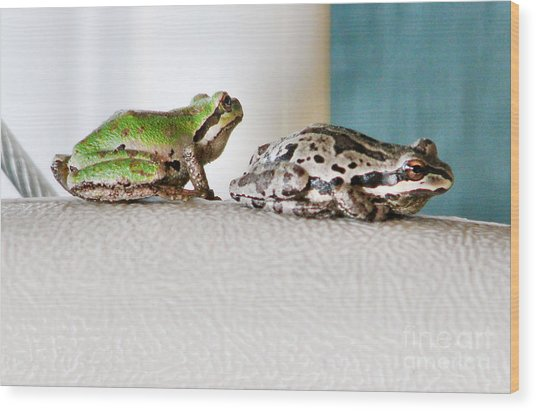 Frog Flatulence - A Case Study Wood Print