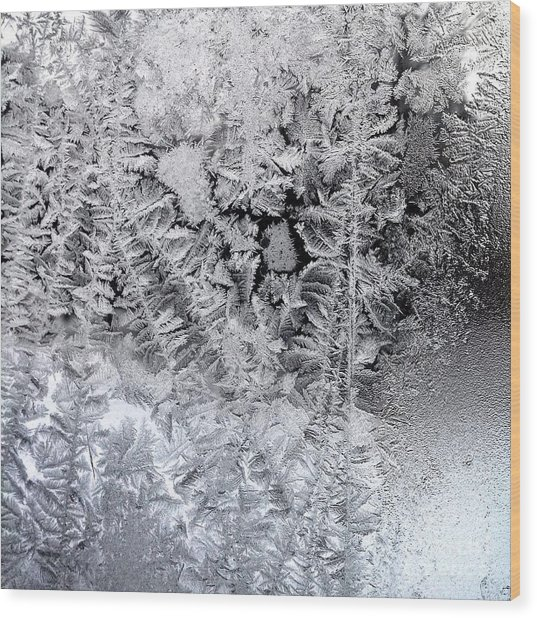 Frost Windowpane In Maine Number One Wood Print