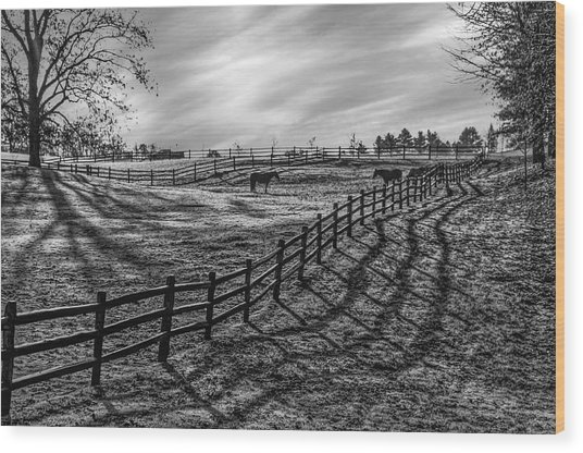 Frosty Corral At Dawn Wood Print