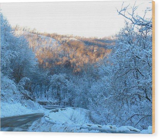Frosty Descent Wood Print