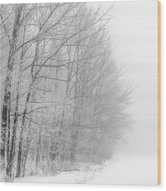 Frosty Forest Frontier Wood Print