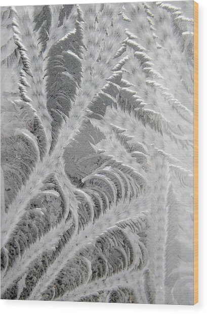 Frosty Window Art Wood Print