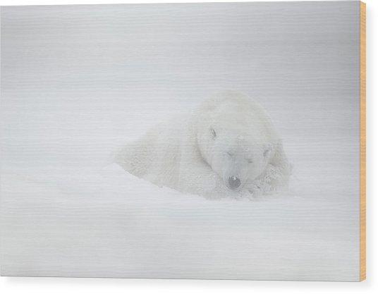 Frozen Dreams Wood Print by Marco Pozzi