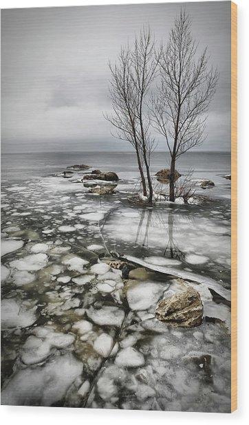 Frozen Lake Wood Print by Vedran Vidak
