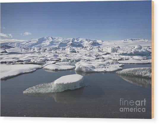 Frozen Paradise Wood Print