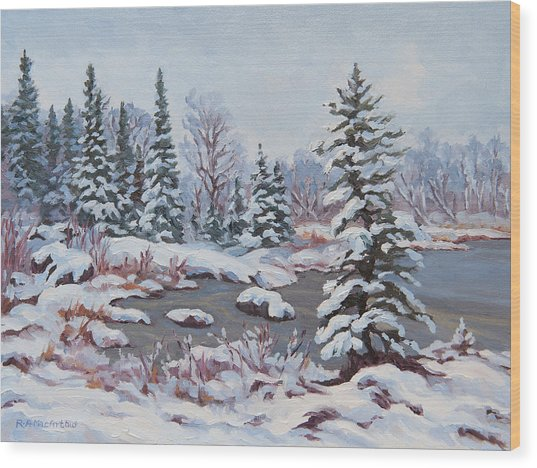 Frozen Pond Wood Print by Rob MacArthur