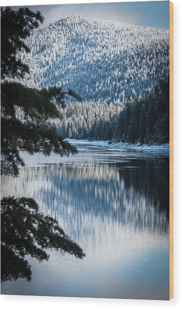 Frozen Reflection Wood Print