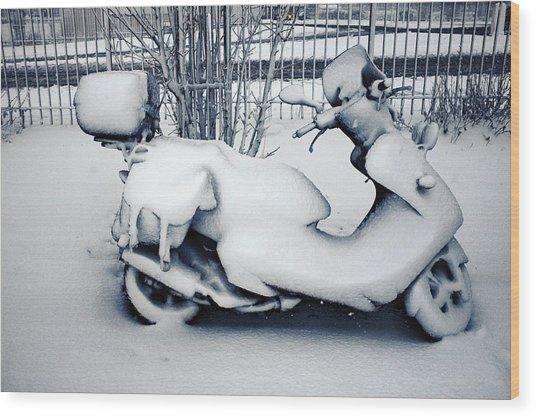 Frozen Ride Wood Print