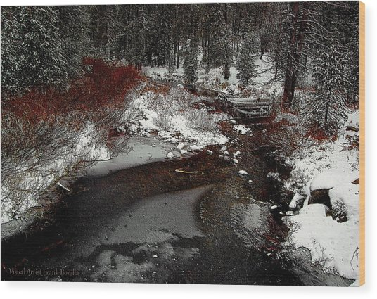 Frozen Stream II Wood Print