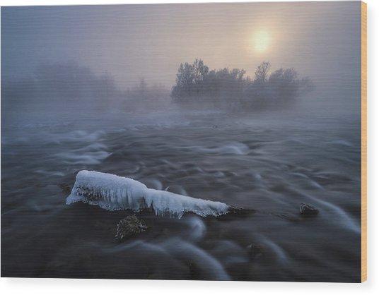 Frozen Wood Print by Tom Meier