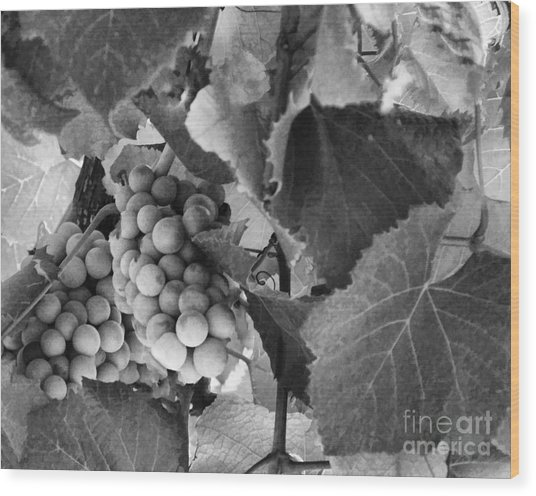 Fruit -grapes In Black And White - Luther Fine Art Wood Print