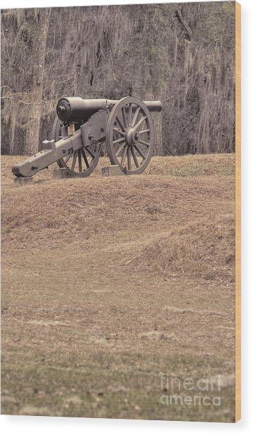 Ft. Mcallister Cannon 2 View 2 Wood Print