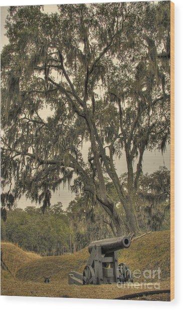 Ft. Mcallister Cannon 3 Wood Print