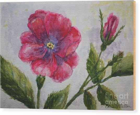 Fuchsia Rose And Bud Wood Print by Terri Maddin-Miller