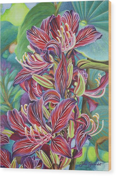 Full Blossom Orchid Tree Wood Print