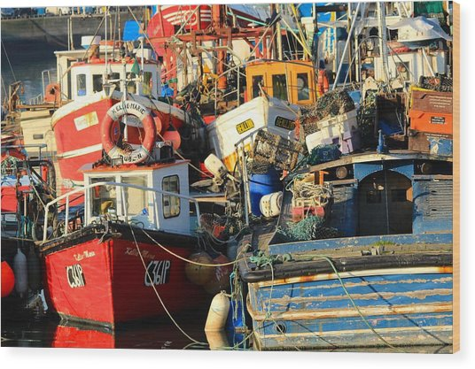 Full Harbour Wood Print