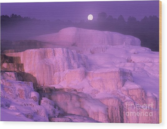 Full Moon Sets Over Minerva Springs On A Winter Morning Yellowstone National Park Wood Print