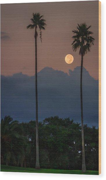 Full Moon Setting Wood Print