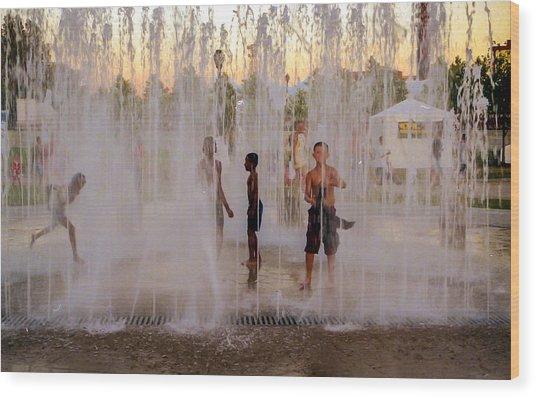 Fun At The Fountain Wood Print