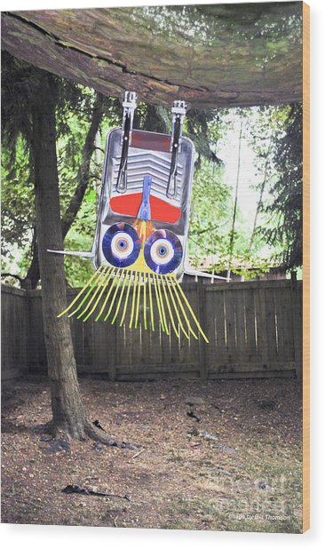 Fun To Hang Upside Down From A Tree Wood Print