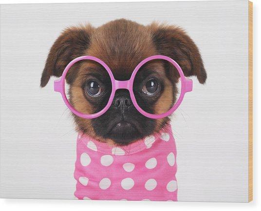 Funny Puppy Wood Print by Retales Botijero
