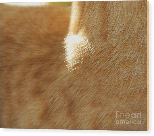 Fur Wood Print