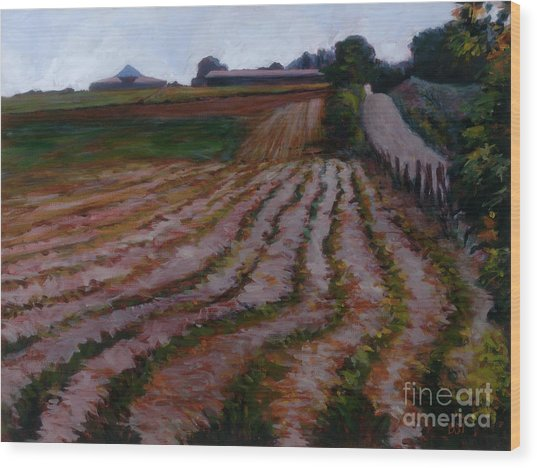 Furrowed Field Wood Print