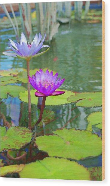 Fushia Lily  Wood Print