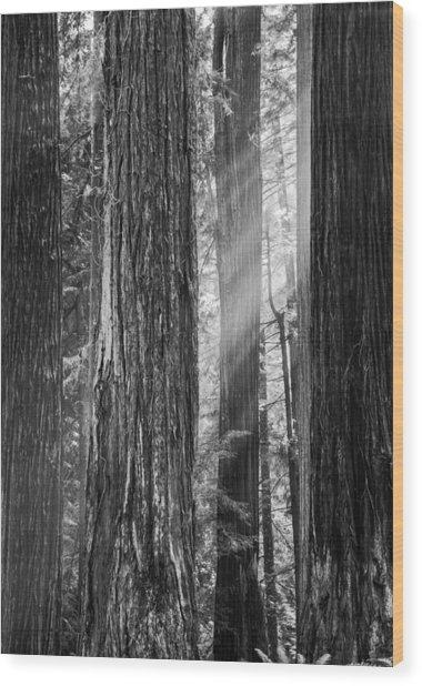 Future Giants Monochrome Wood Print