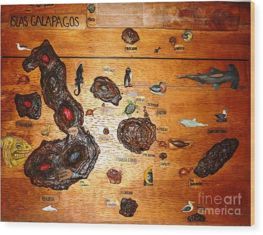 Galapagos Islands Map Wood Print