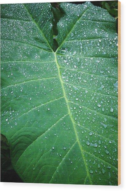 Galaxy Rain Wood Print
