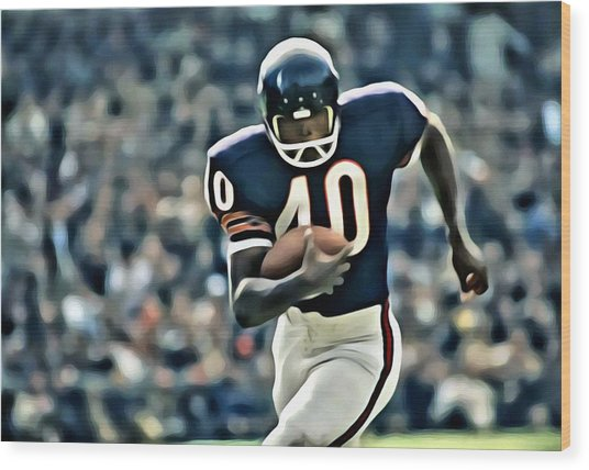 Gale Sayers Wood Print