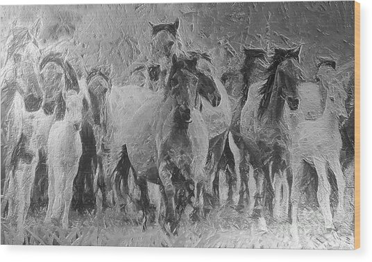 Galloping Horse Team Wood Print