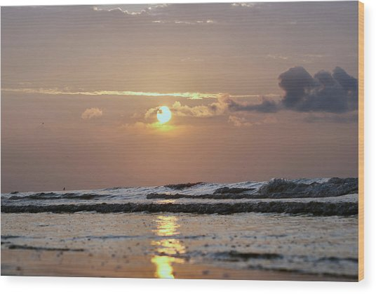 Galveston Island - Texas Wood Print by Michael Davis