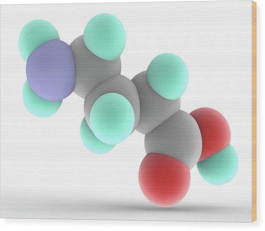 Gamma-aminobutyric Acid Gaba Molecule Wood Print