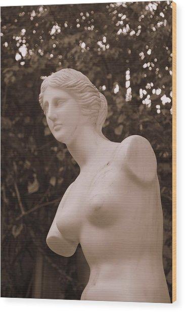 Garden Bust Wood Print
