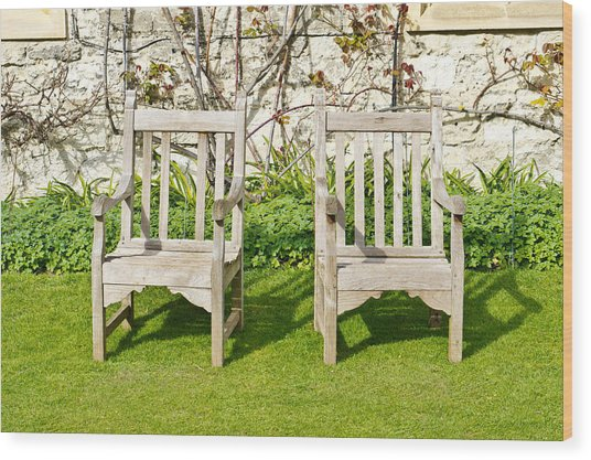Garden Chairs Wood Print