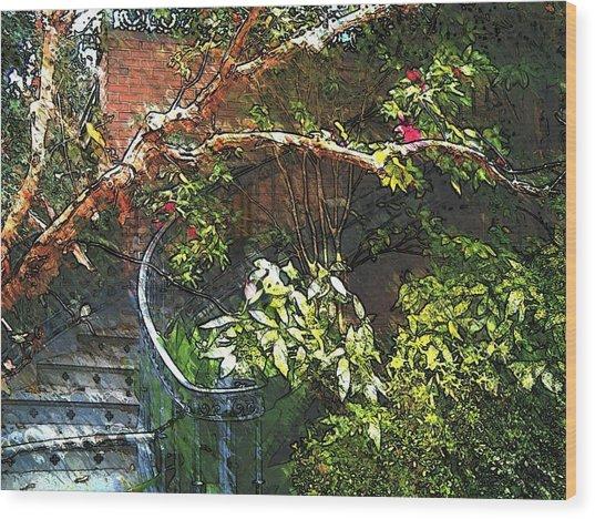 Garden Climb  Wood Print