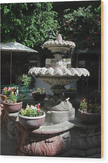 Garden Fountain Wood Print by Pat Knieff
