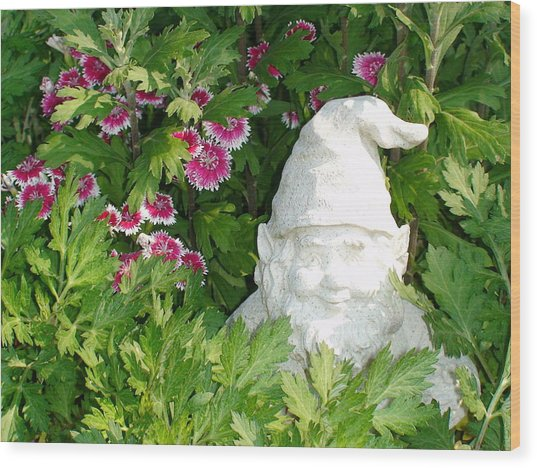 Garden Gnome Wood Print