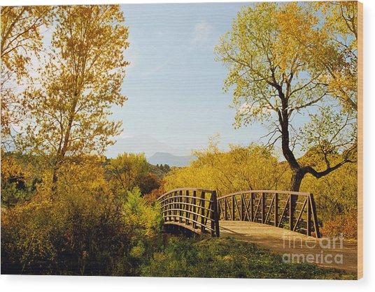 Garden Of The Gods Bridge Wood Print