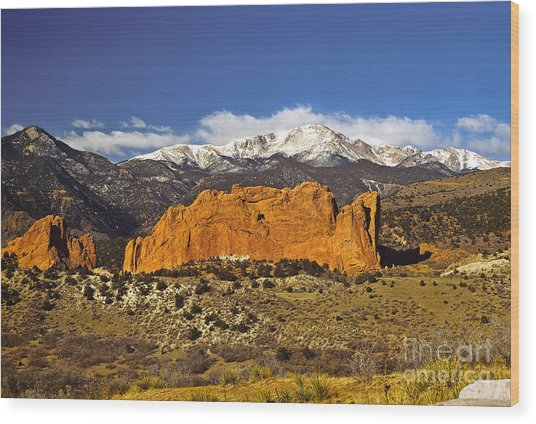 Garden Of The Gods - Colorado Springs Wood Print