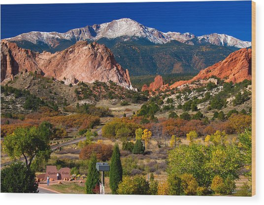 Garden Of The Gods In Autumn 2011 Wood Print